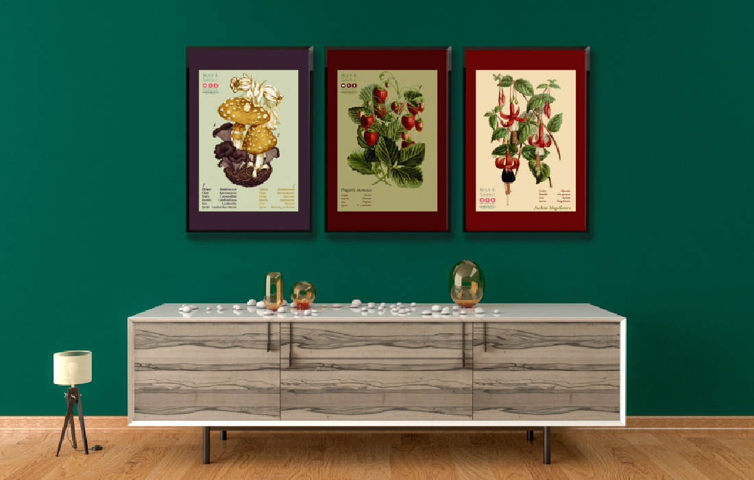 botanical-drawing-mockups-botanical-garden-raw-ideas-portfolio
